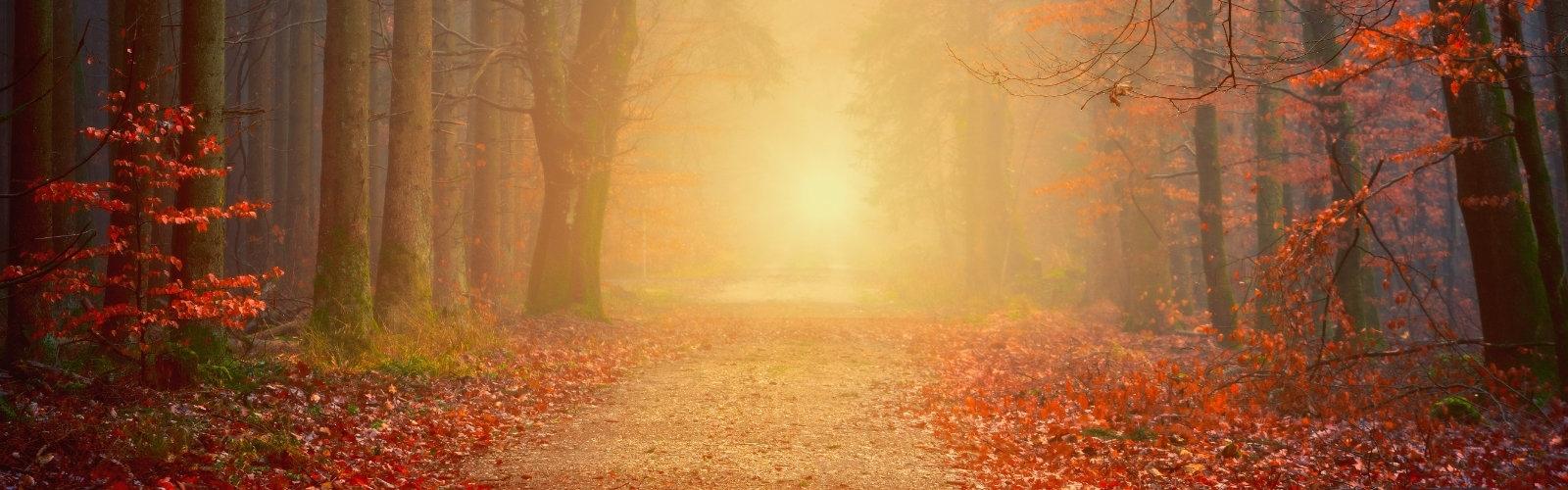 Lassulj le az ősz tempójára!